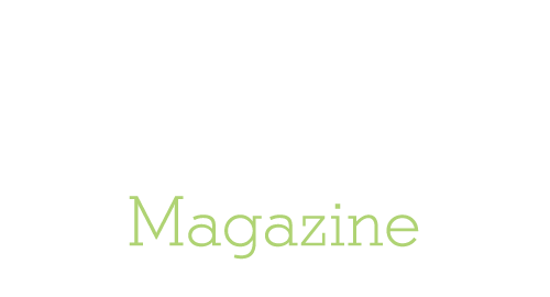 Logo Zeta Magazine